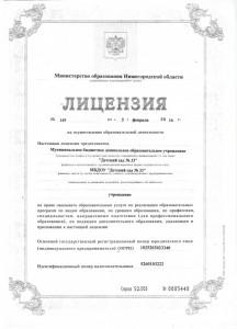 лицензия дс33 001